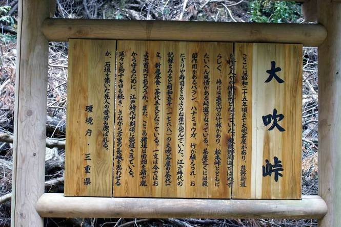 100106kumano_06.jpg